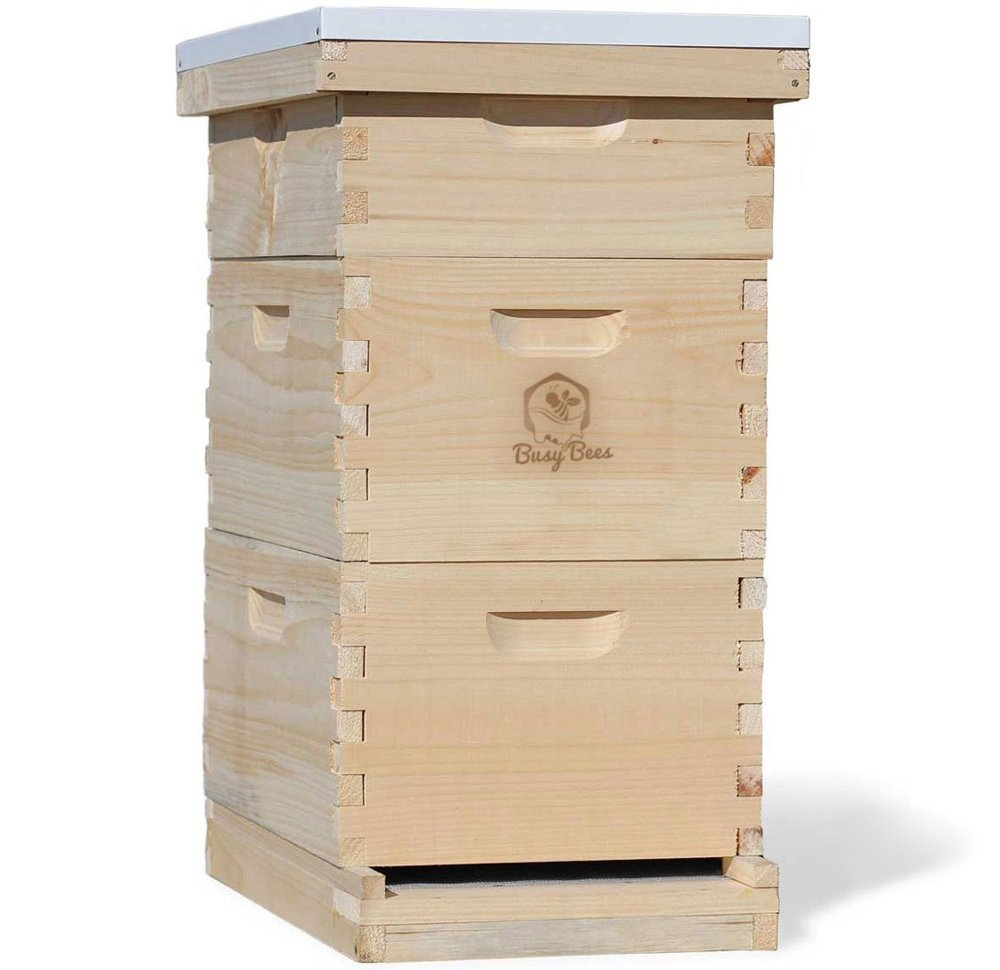 busy-bees-langstroth-bee-hive
