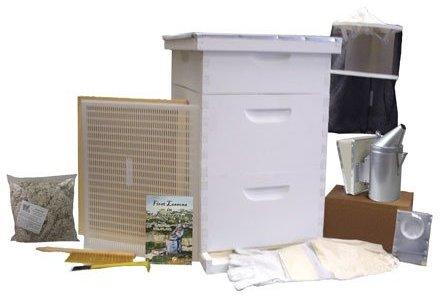 gold standard beehive starter kit