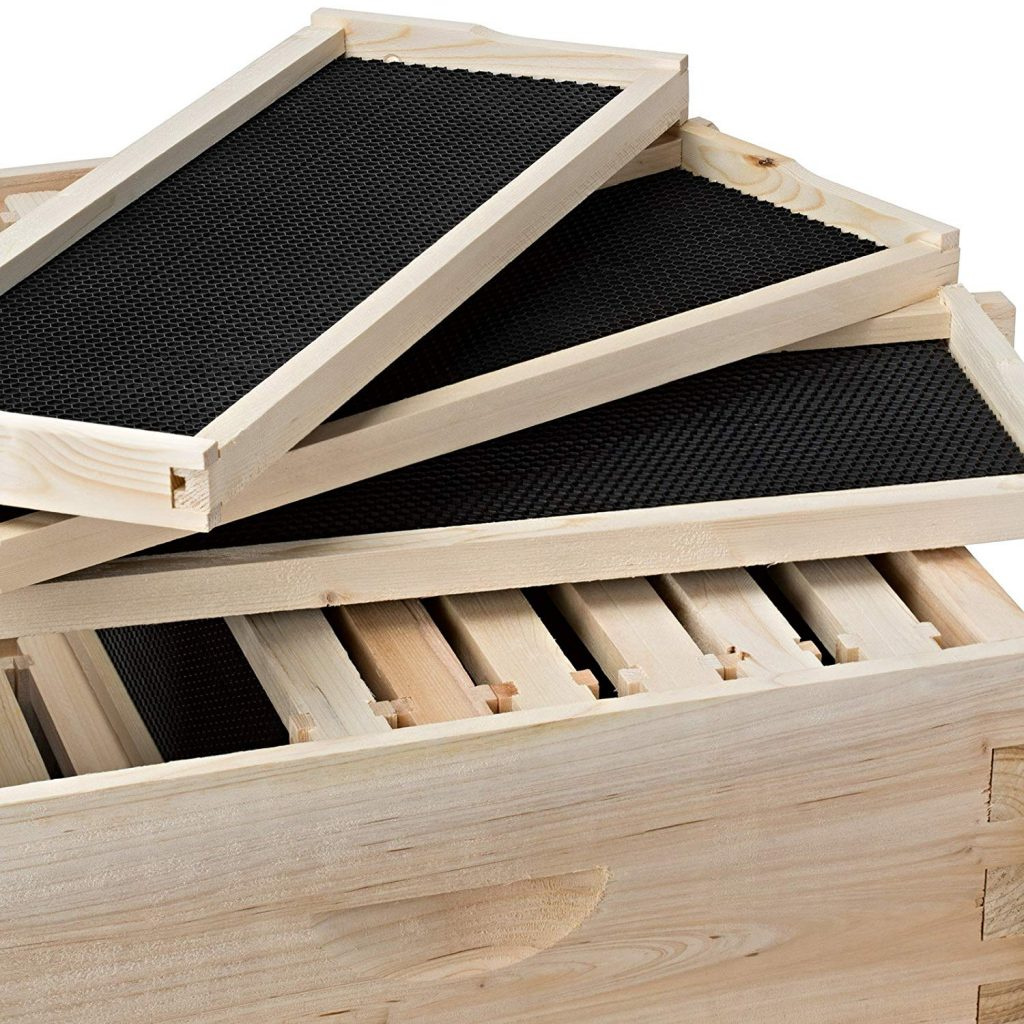 The Best Unassembled Beehive Kits - Complete Beehives