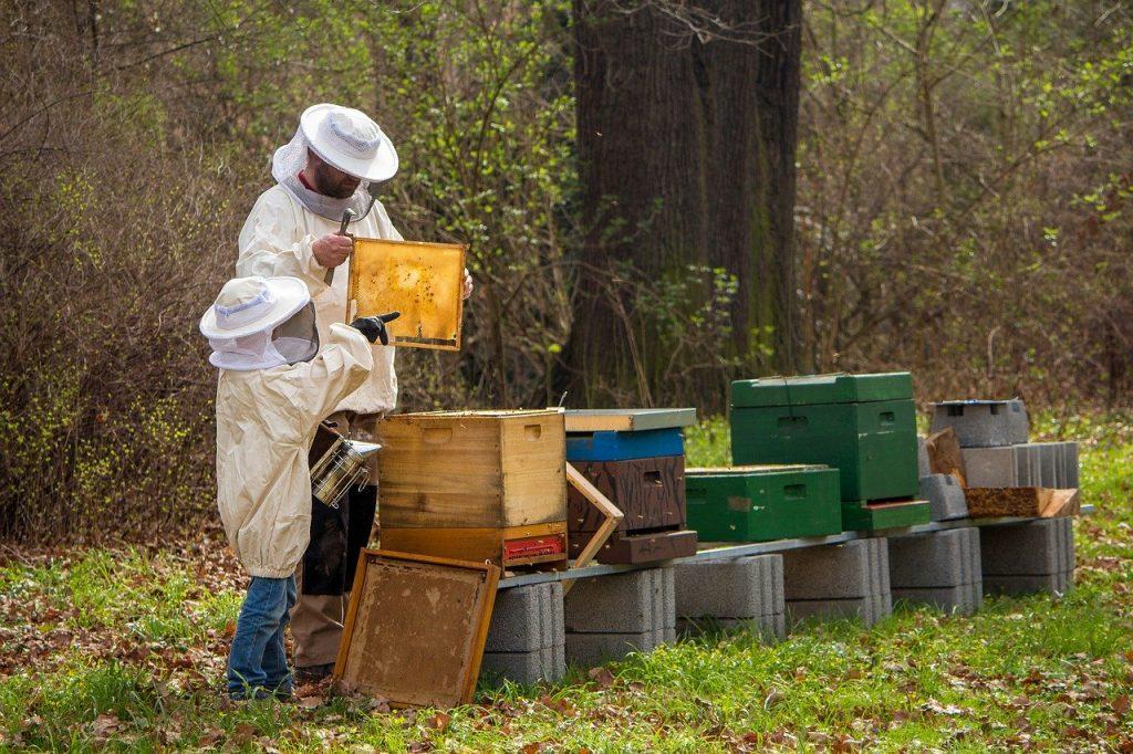 2019 Beekeeping White Bee Hat and Veils Beekeeper One fit  Useful Tools